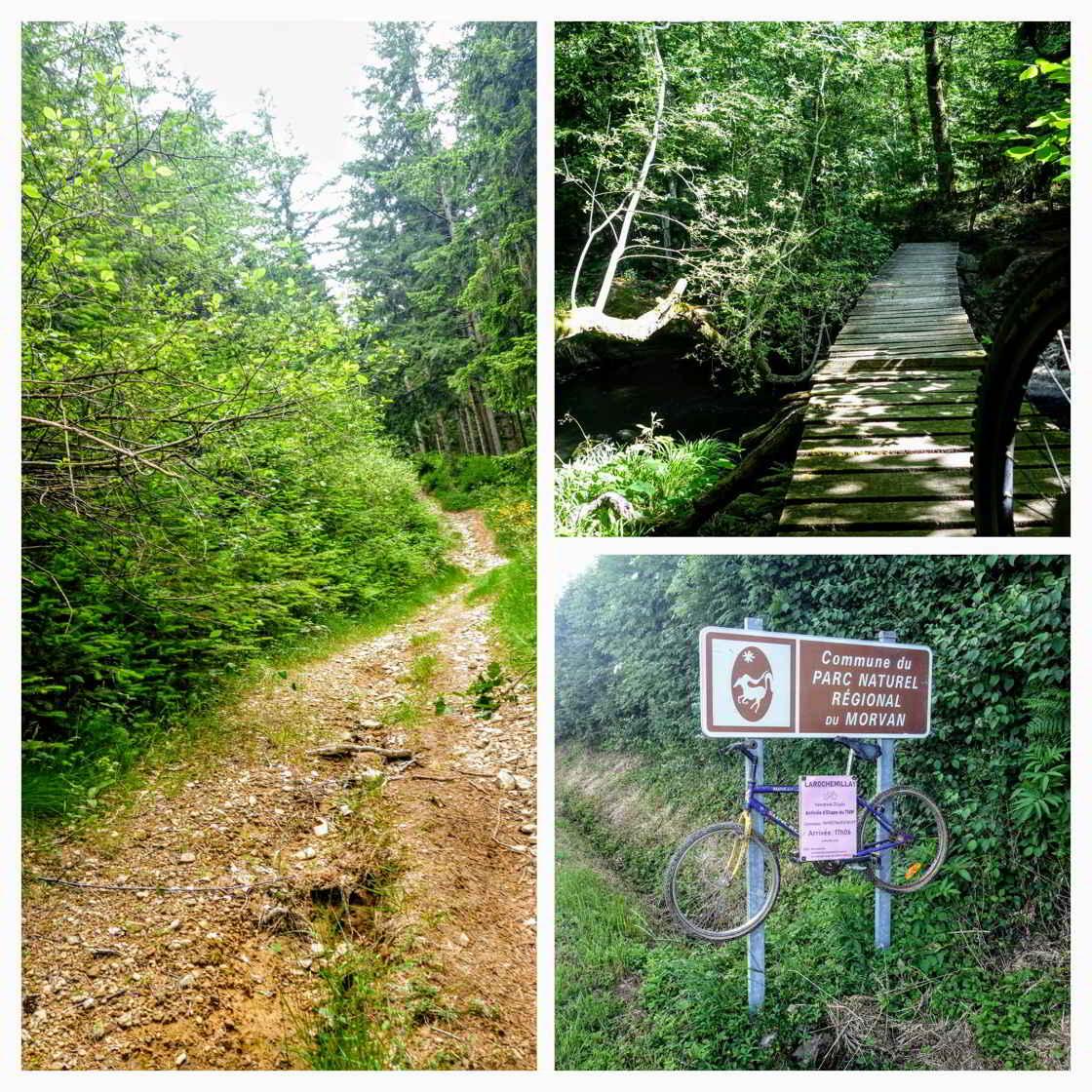collage van beelden Morvan Natuurpark
