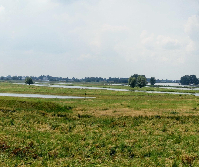 overzicht uiterwaarden langs de Maas