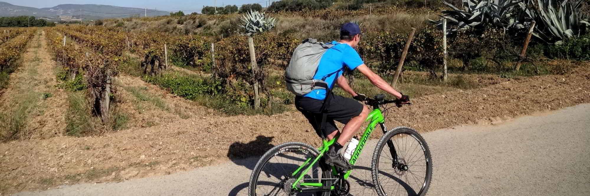 header foto fietsen in penedes
