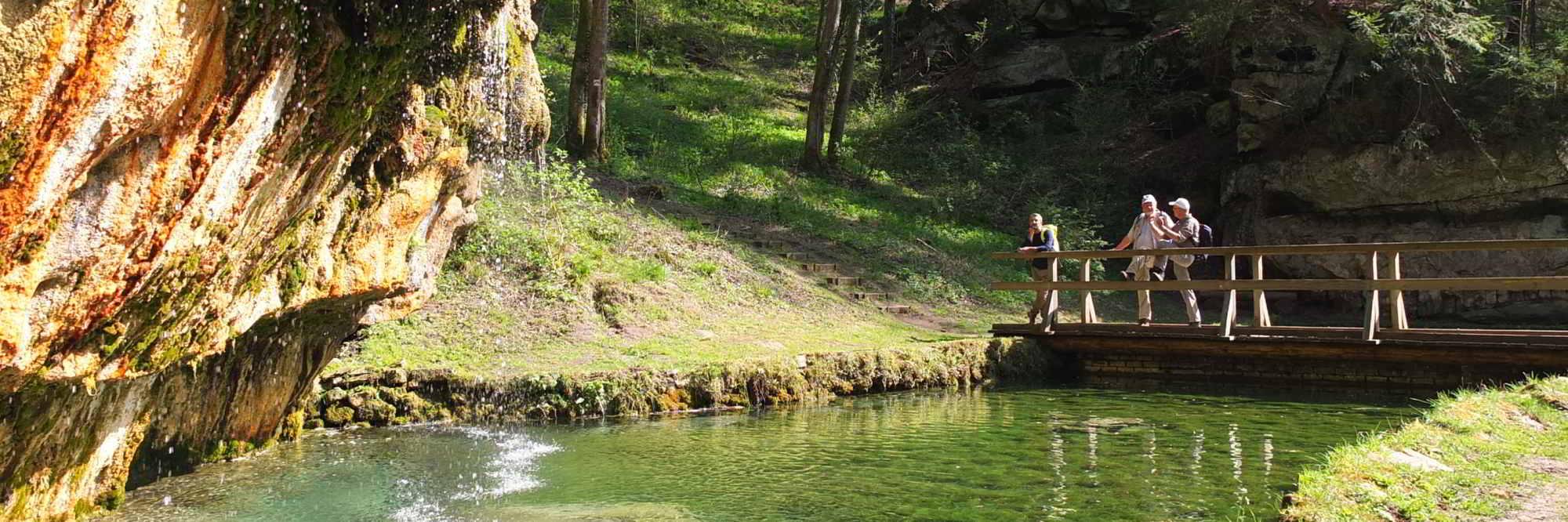 Mullerthal Trail headerfoto